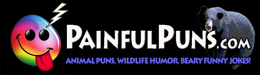 PainfulPuns.com - Animal Puns, Wildlie Humor, Beary Funny Jokes!