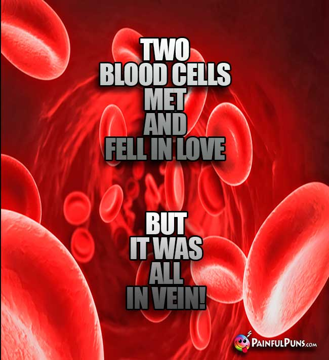 Two blood cells met and fell in love, but it was all in vein!