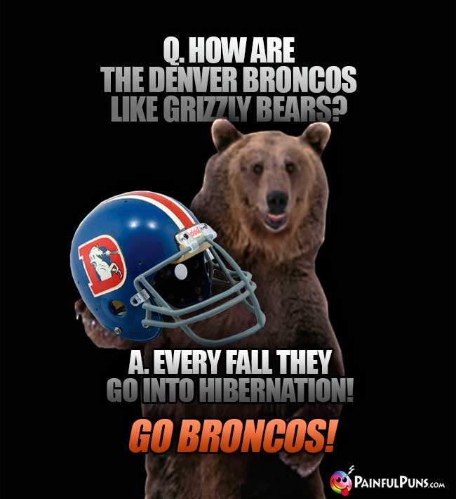 Q. How are the Denver Broncos like grizzly bears? A. Every fall they go into hibernation! Go Broncos!