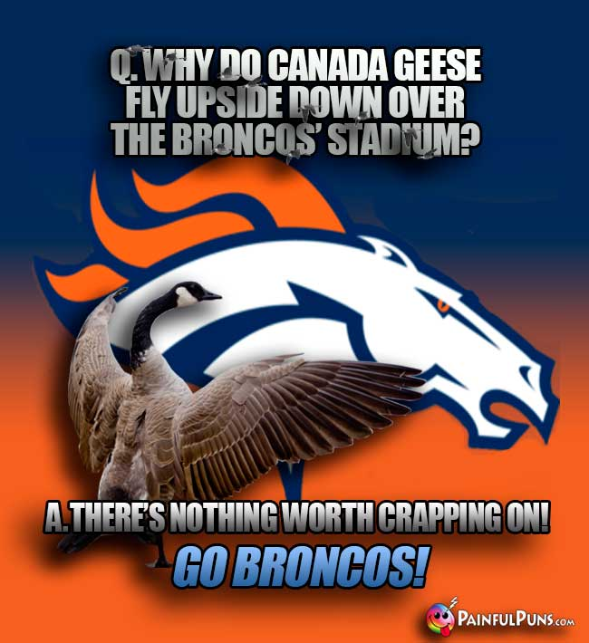 Q. Why do Canada geese fly upside down over the Broncos' stadium? A. There's nothing worth crappon on! GO Broncos!