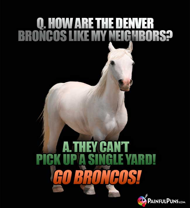 Q. How are the Denver Broncos like my meighbors? A. They can't pick up a single yard! Go Broncos!