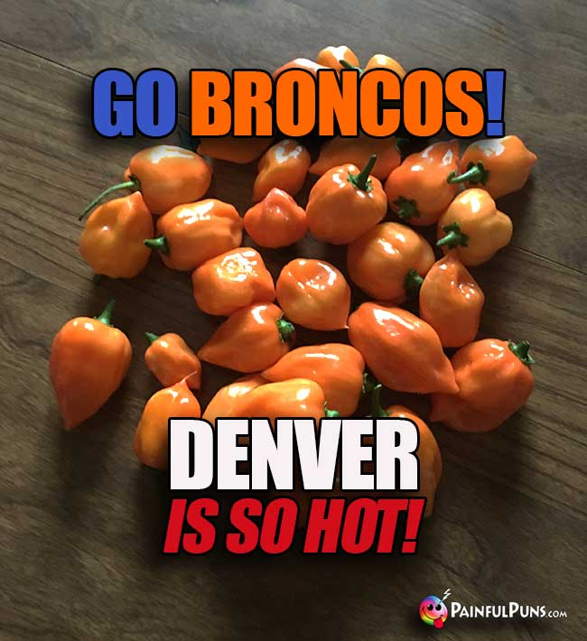 Orange Habanero Peppers say: Go Broncos! Denver is so hot!