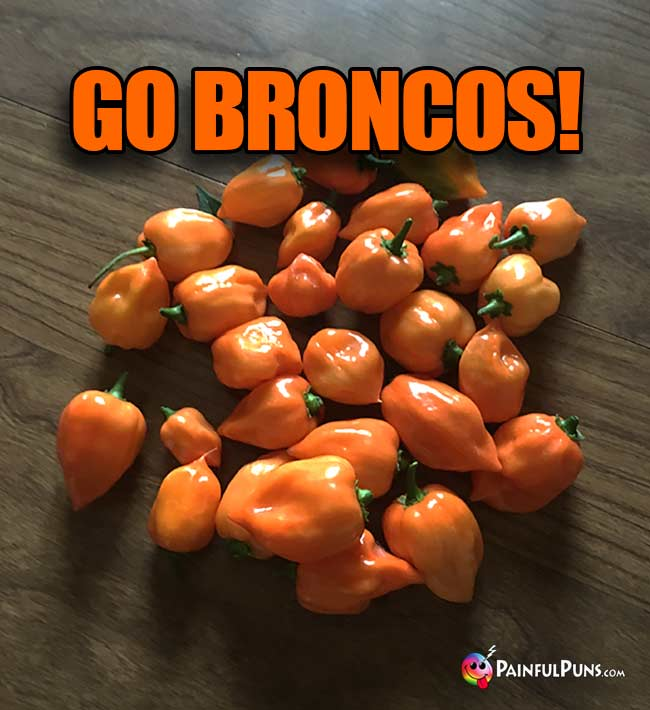 Orange Habanero peppers: Go Broncos!