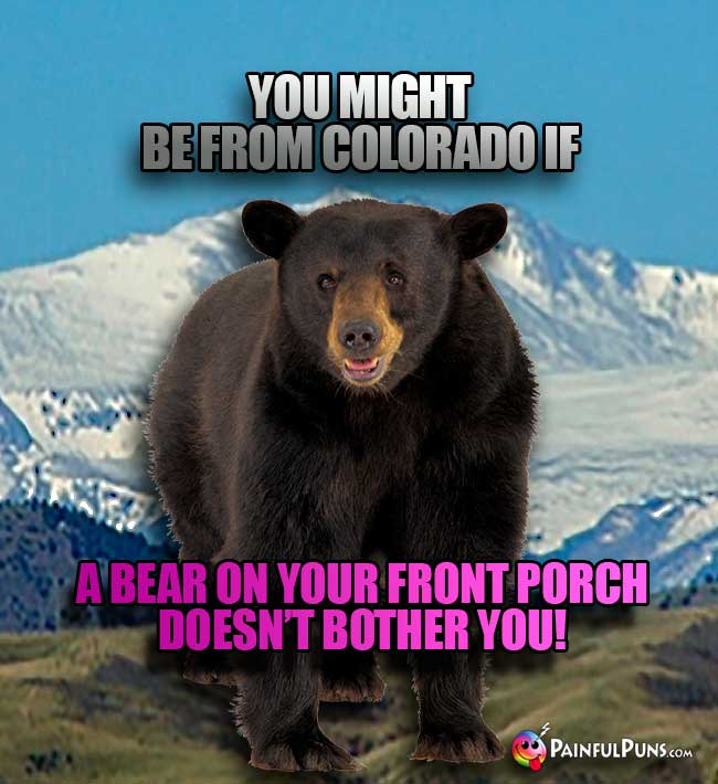 You might be from Colorado if a bear on your front porch doesn't bother you!