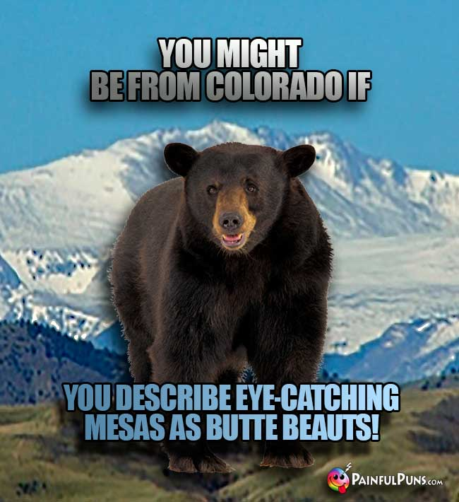 You might be from Colorado if you describe eye-catching mesas as butte beauts!