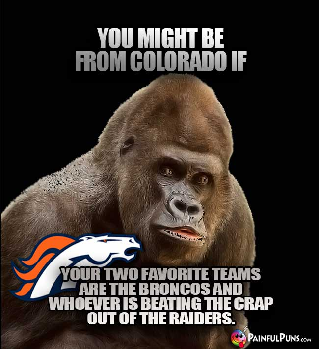 You might be from Colorado if your two favorite teams are the Broncos and whoever is beating the crap out of the Raiders.