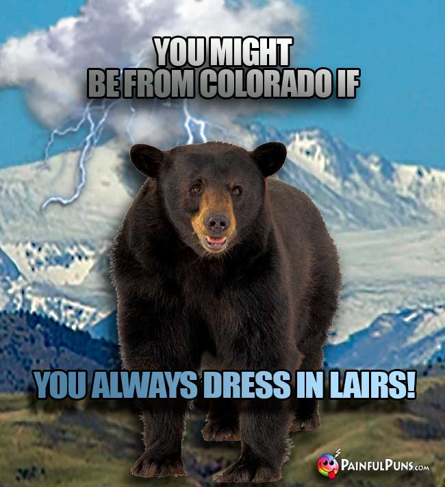 Bear says: You might be from Colorado if you always dress in lairs!