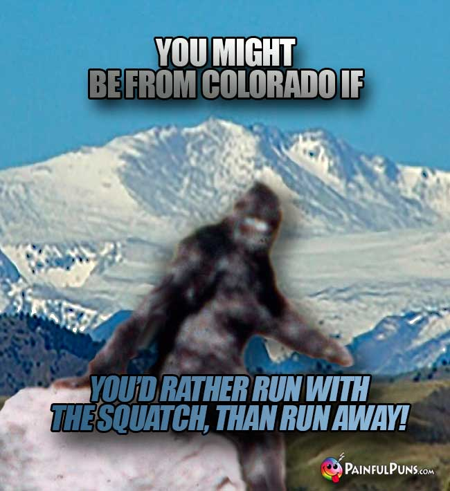 You might be from Colorado if you'd rather run with the squatch, than run away!