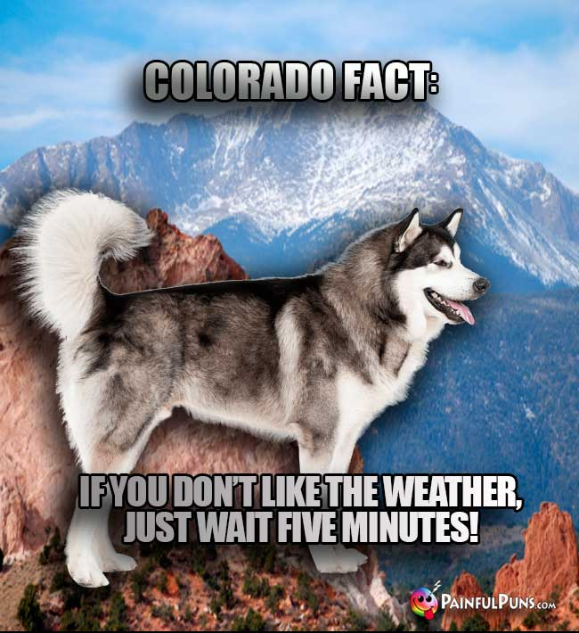 Colorado Fact: If you don't like the weaterh, just wait five minutes!