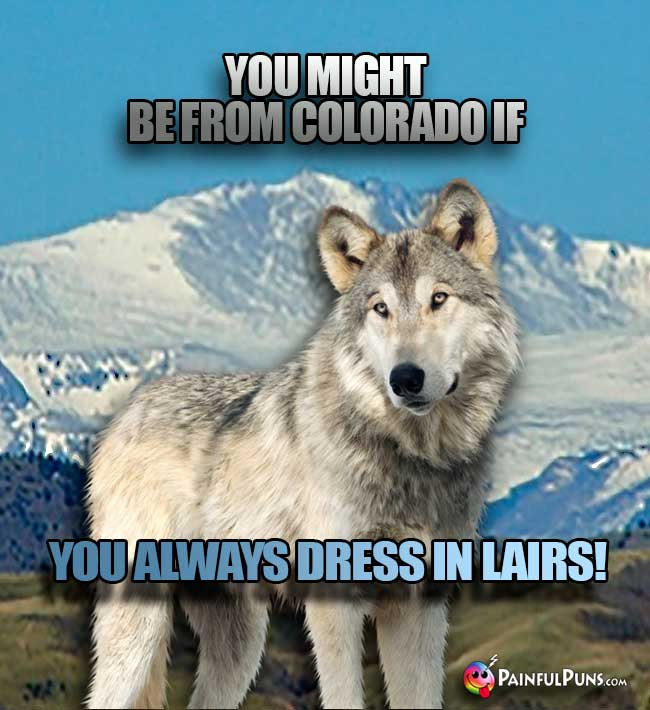 Wolf says: You might be from Colorado if you always dress in lairs!