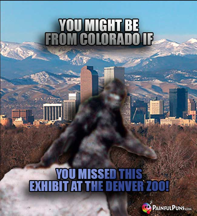 You might be from Colorado if you missed this exhibit at the Denver Zoo!