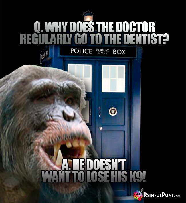 Q. why does the Doctor regularly go to the dentist? A. He doesn't want to lose his K9!