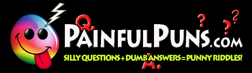 PainfulPuns.com - Silly Questions + Dumb Answers = Punny Riddles
