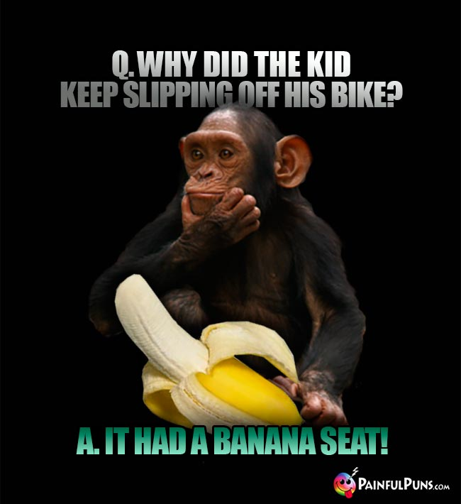 Monkey telling banana jokes: Why did te kid keep slipping off his bike? A. It had a banana seat!