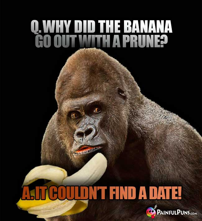 Q. Why did the banana go out with a prune? A. It couldn't find a date!