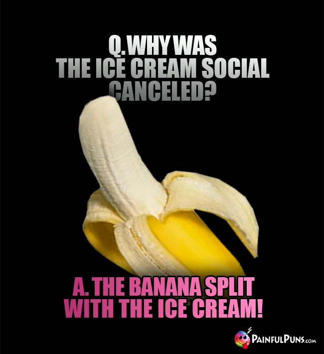 Q. Why was the ice cream social canceled? A. The banan split with the cream!