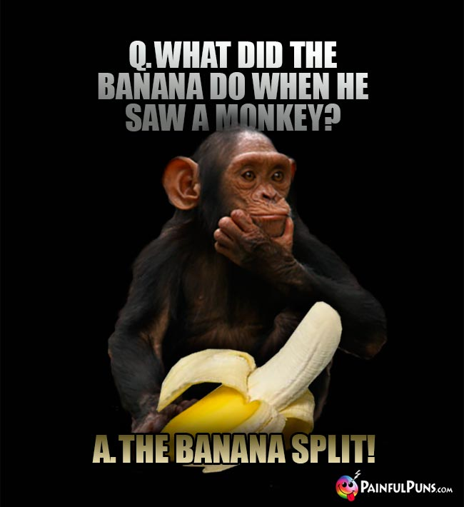 Q. What did the banana do when he saw a monkey? A. The banana split!
