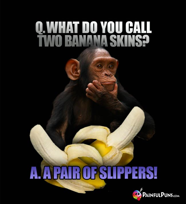 Chimp asks: What do you call two banana skins? A. A pair of slippers!