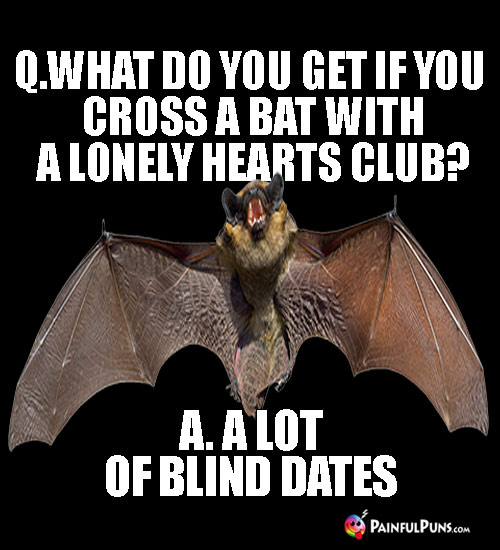 Q. What do you get if you cross a bat with a lonely hearts club? A. A lot of blind dates.
