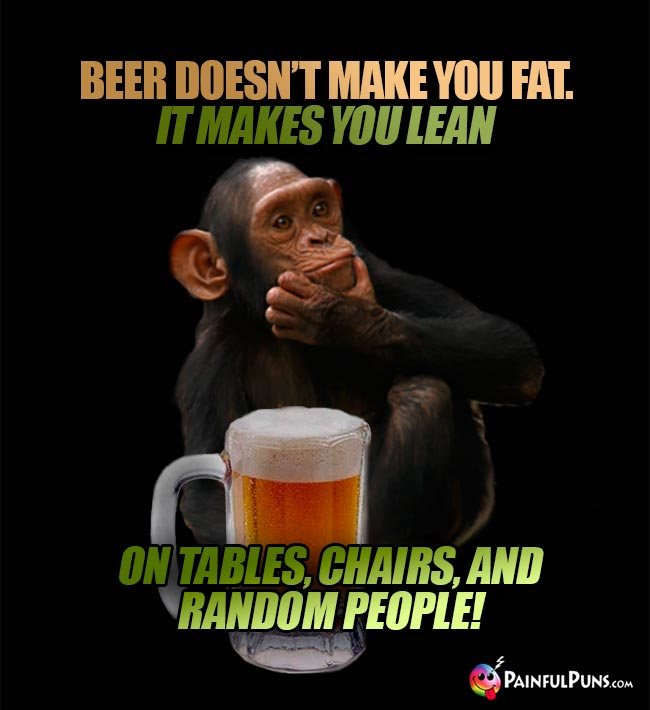 Chimp remarks: Beer doesn't make you fat. It makes you lean...on tables, chairs, and random people!