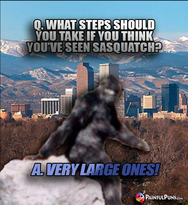 Denver asks: What steps should you take if you think you've seen sasquatch? A. Very large ones!