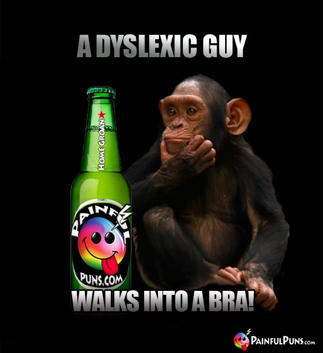 Chimp tells a bar joke: A dyslexic guy walks into a bra!