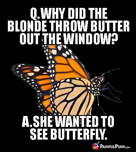 Q. Why did the blonde throw butter out the window? A. She wanted to see butterfly.