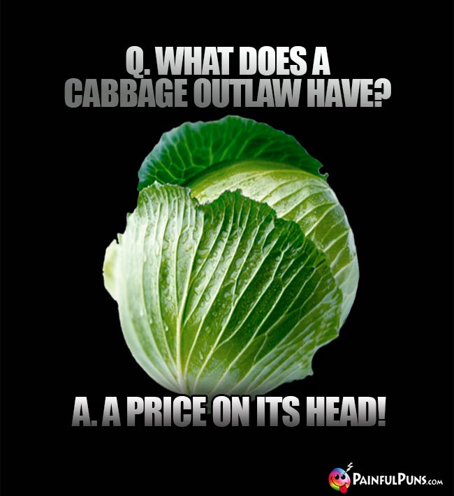 Q. What does a cabbage outlaw have? A. A price on its head!