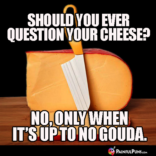 Should you ever question your cheese? No, only when it's up to no gouda.