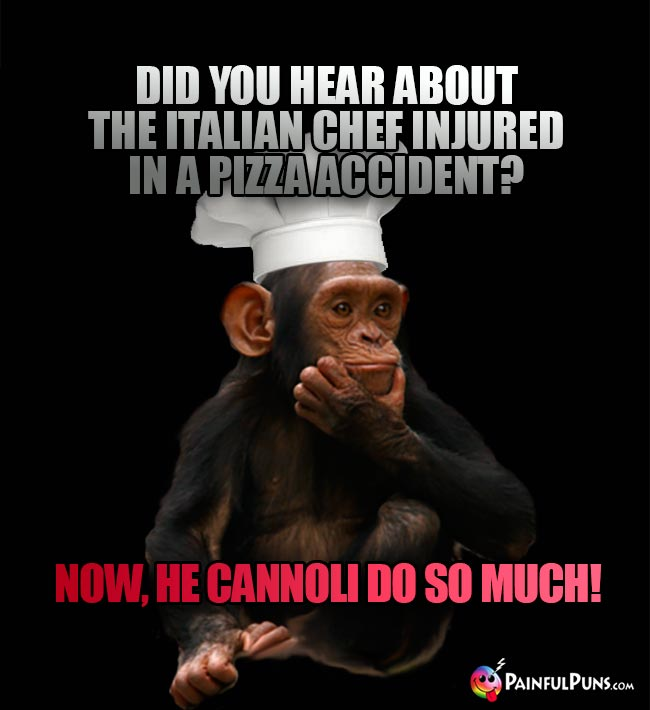 Chimp Chef Asks: Did you hear about the Italian chef injured in a pizza accident? Now, he cannoli do so much!