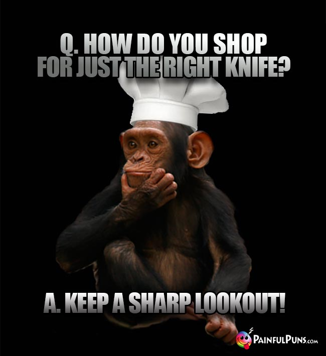 Chimp Chef Asks: How do you shop for just the right knife? A. Keep a sharp lookout!