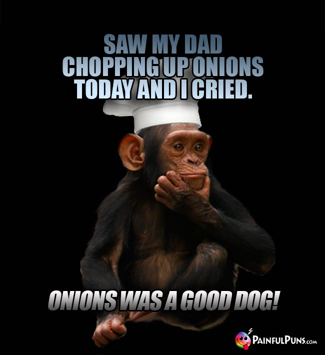 Chimp Chef Says: Saw my dad chopping up Onions today and I cried. Onions was a good dog!
