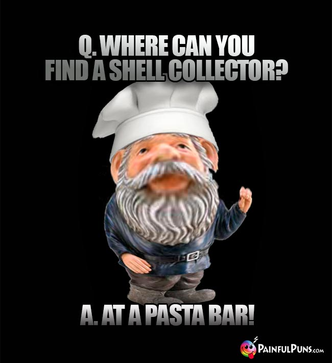 Q. Where can you find a shell collector? A. At a pasta bar!