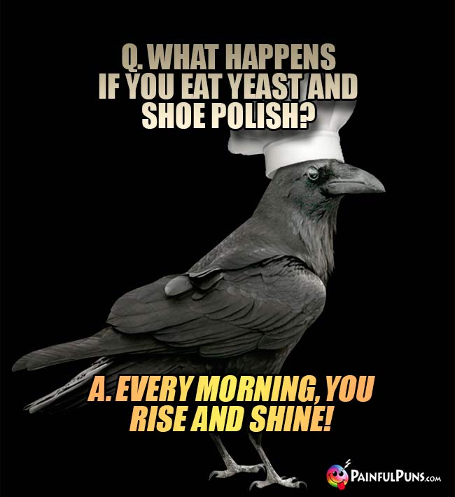 Crow Chef Asks. What happens if you eat yeast and shoe polish? A. Every morning, you rise and shine!