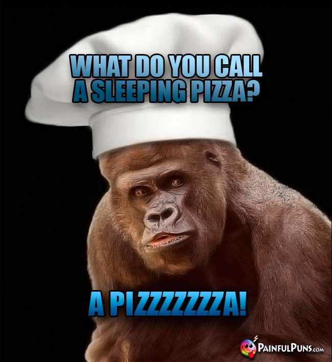 Ape Chef Asks: What do you call a sleeping pizza? A Pizzzzzza!