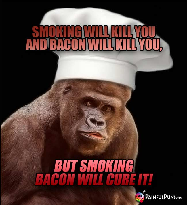 Ape Chef Says: Smoking will kill you and bacon will kill you, but smoking bacon will cure it!