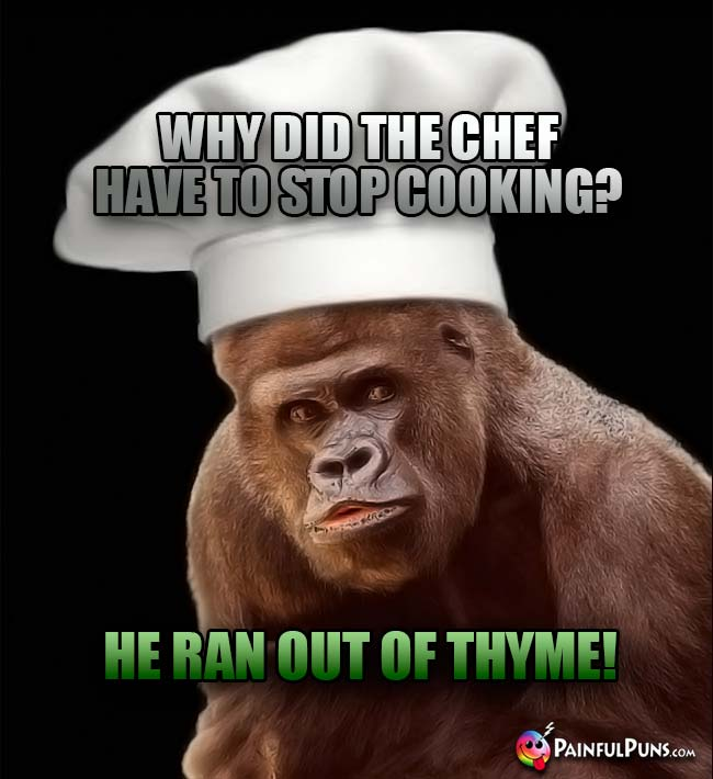 Gorilla Chef Asks: Why did the chef have to stop cooking? He ran out of thyme!