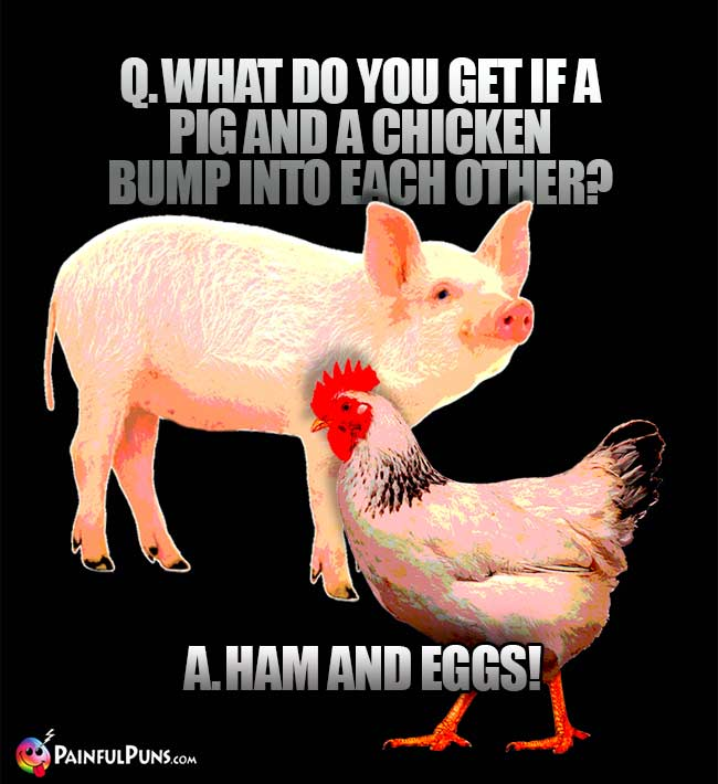 Q. What do you get if a pig and a chicken bump into each other? A. Ham and Eggs!