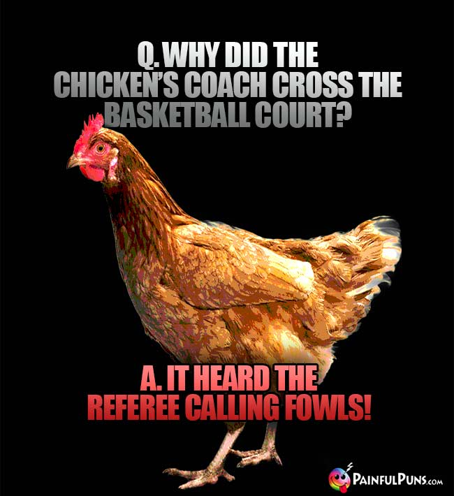 Q. Why did the chicken's coach cross the basketball court? A. It heard the referee calling fowls!