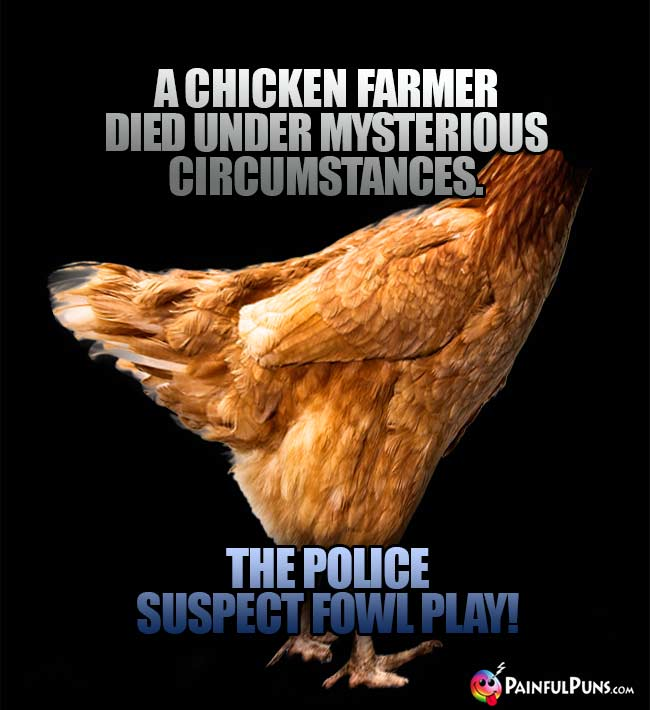 A chicken farmer died under mysterious circumstances. The police suspect fowl play!