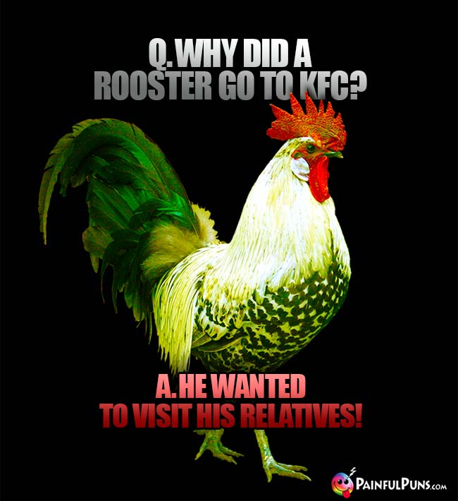 Q. Why did a rooster go to KFC? A. He wanted to visit his relatives!