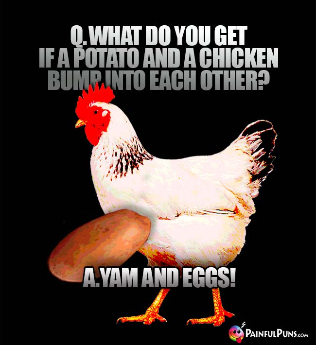Q. What do you get if a potato and a chicken bump into each other? A. Yam and Eggs!