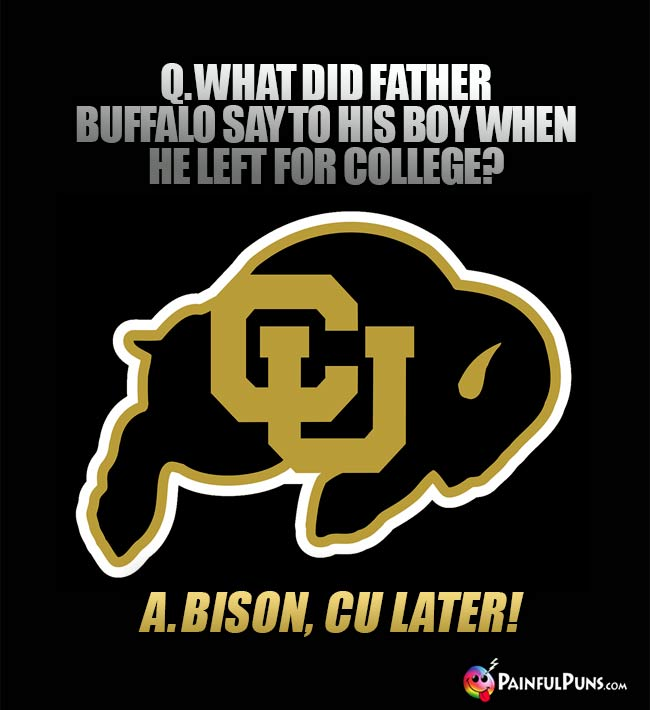 Q. What did father buffalo say to his boy when he left for college? A. Bison, CU later!