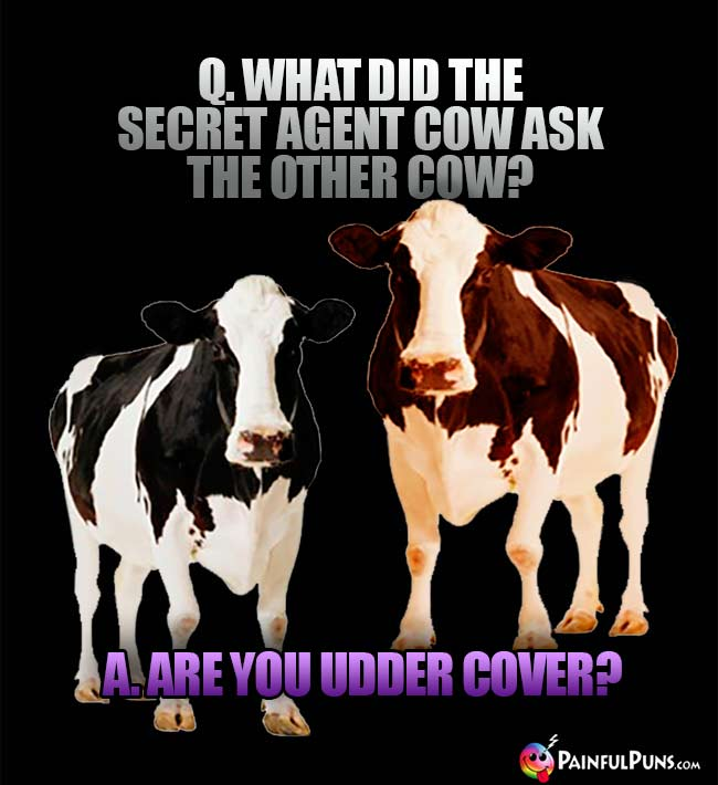 Q. What did the secret agent cow ask the other cow? A. Are you udder cover?