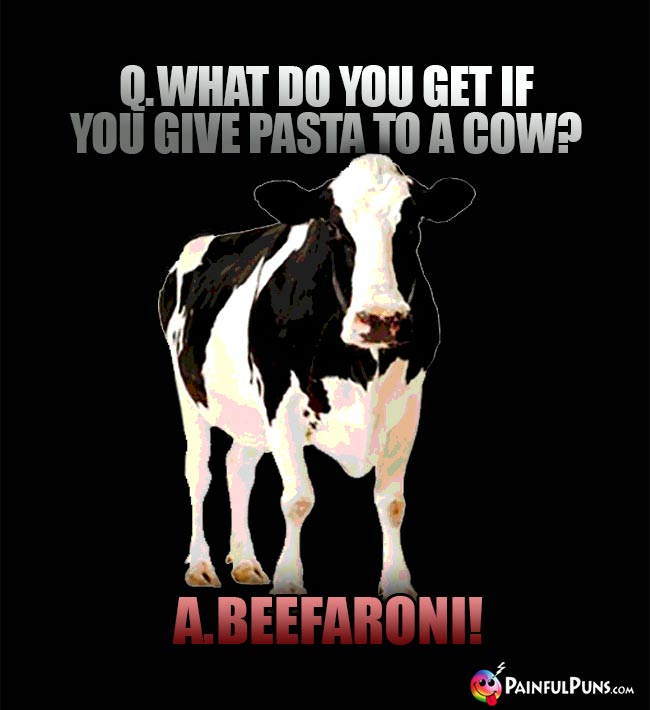Q. What do you get if you give pasta to a cow? A. Beefaroni!