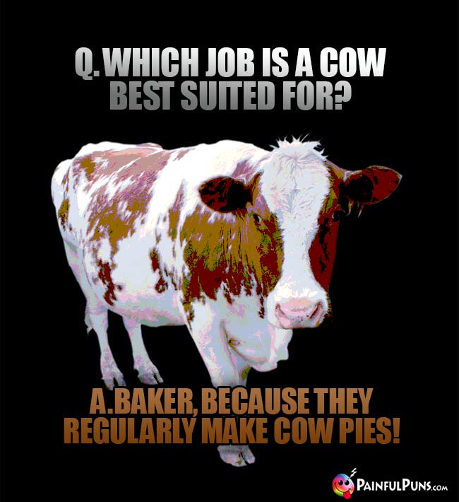 Q. Which job is a cow best suited for? A. Baker, because they refularly make cow pies!