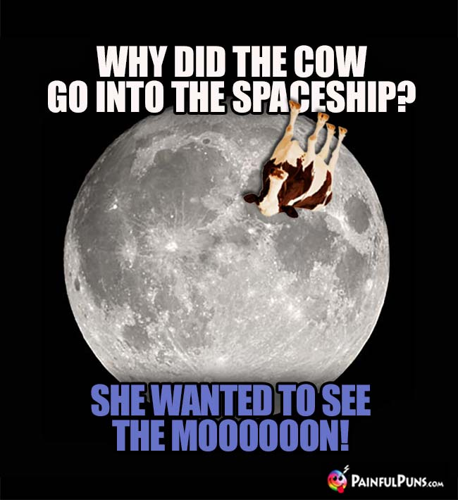 Why did the cow go into the spaceship? She wanted to see the Moooooon!