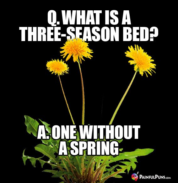 Q. What is a three-season bed? A. One without a spring.