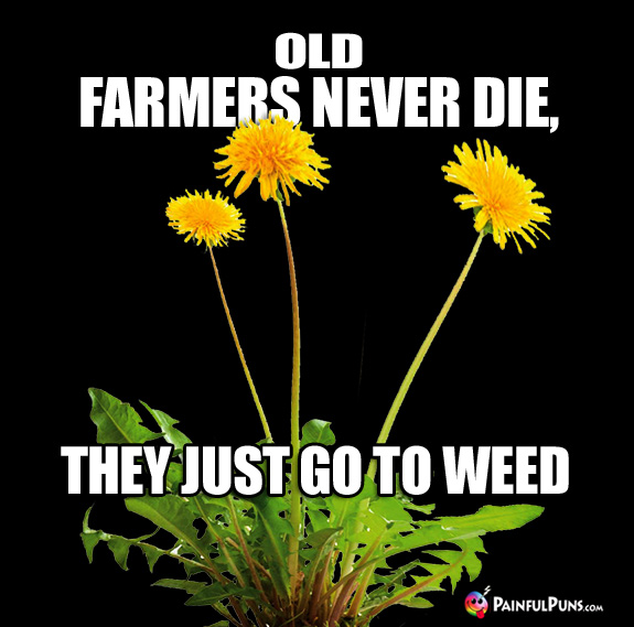 Old Farmers Never Die, They Just Go To Weed