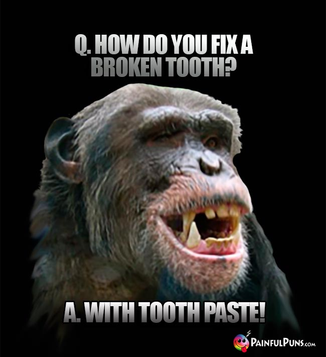 Q. How do you fix a broken tooth? A. With tooth paste!